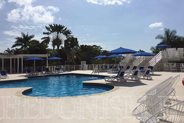 The newly renovated main pool - Hedo II