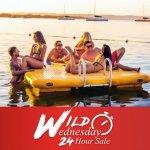 wild-wednesday-november