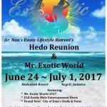 hedo-reunion-mr-exotic