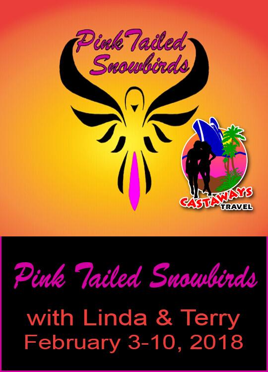 pink-tailed-snowbirds-02-2018